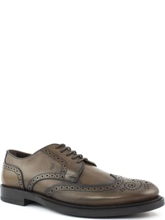 Tod's Lace Ups In Brown Leather