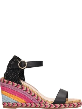 Sophia Webster Black Suede Lucita Mid Sandals