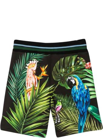 Dolce & Gabbana Tropical Bermuda