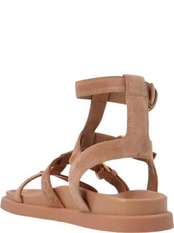 Gianvito Rossi 'arena' Shoes