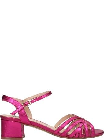 Bibi Lou Sandals In Fuxia Leather