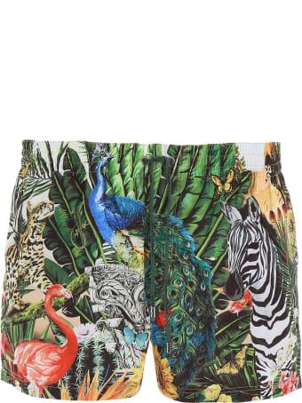 Dolce & Gabbana Tropical King Swim Shorts