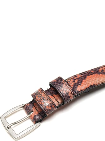 PACCBET Belt