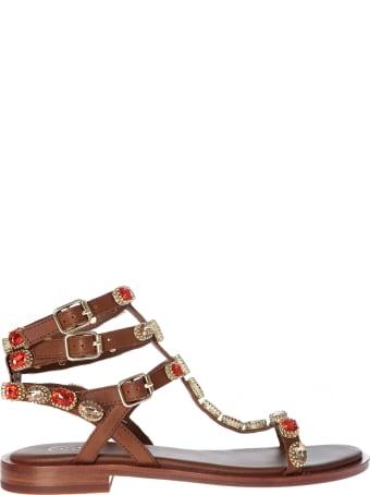 Ash Passion Sandals