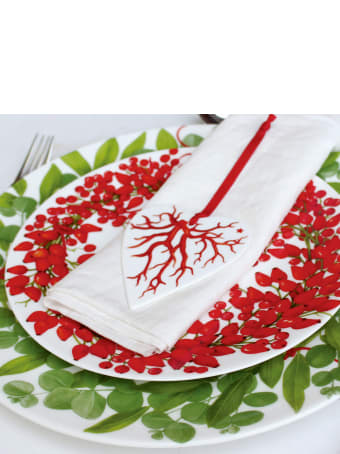 Taitù Set of 4 Salad Plates - Fil Rouge Bacche Collection
