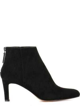 Antonio Barbato Ankle Boots