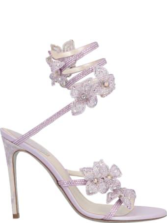 René Caovilla 'floriane' Shoes