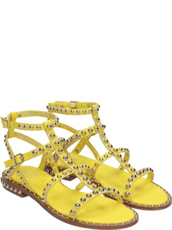 Ash Precious 05 Flats In Yellow Leather