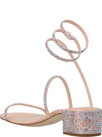René Caovilla 'cleo' Shoes