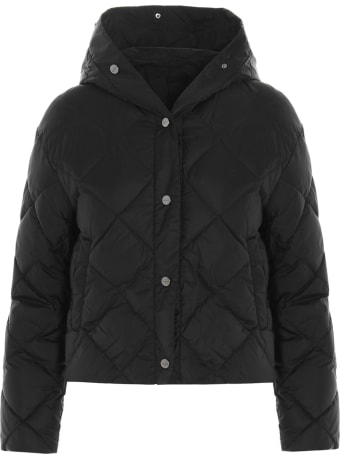 Max Mara The Cube 'cisoft' Jacket