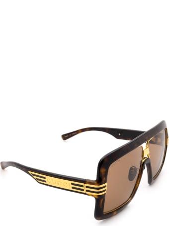 Gucci Gucci Gg0900s Havana Sunglasses