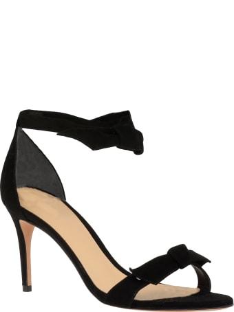 Alexandre Birman Clarita 75 Sandal