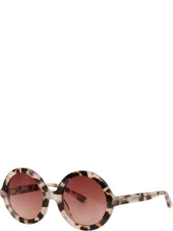 Sons + Daughters Tortoise Lenny Sunglasses