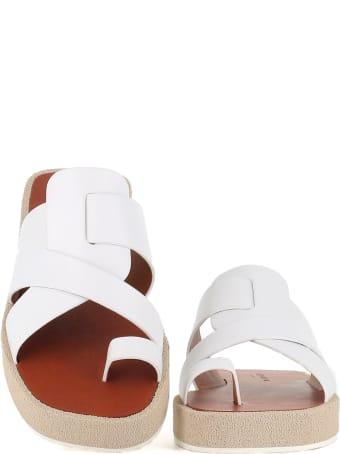 Clergerie Sandal Gia