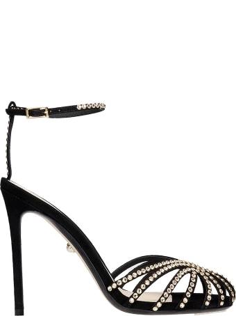 Alevì Iana 110 Sandals In Black Suede