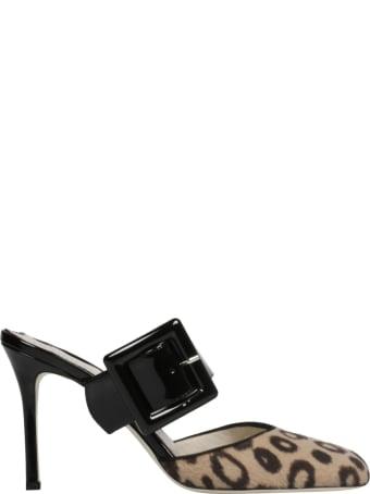 Francesca Bellavita Shoes