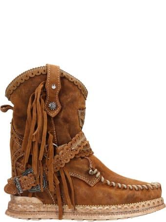 El Vaquero Arya Low Heels Ankle Boots In Leather Color Suede
