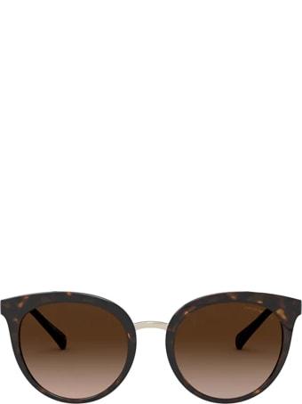 Emporio Armani Emporio Armani Ea4145 Shiny Havana Sunglasses