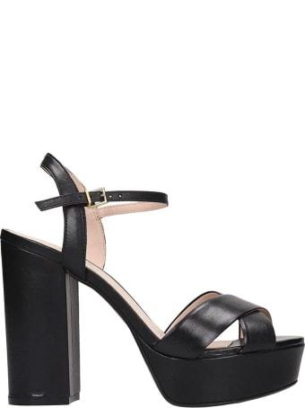 Schutz Sandals In Black Leather