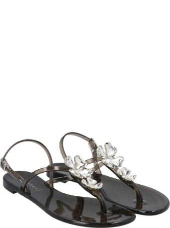 Casadei 'quadrifoglio' Shoes