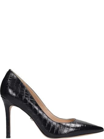 Sam Edelman Hazel Pumps In Black Leather