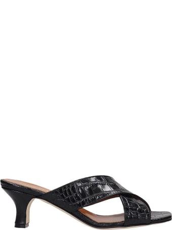 Paris Texas Sandals In Black Leather