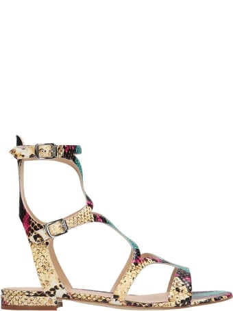 The Seller Multicolor Python Print Leather Gladiator Sandals