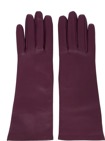 Saint Laurent Gloves
