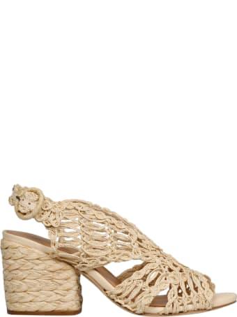 Paloma Barceló Millicent Sandals