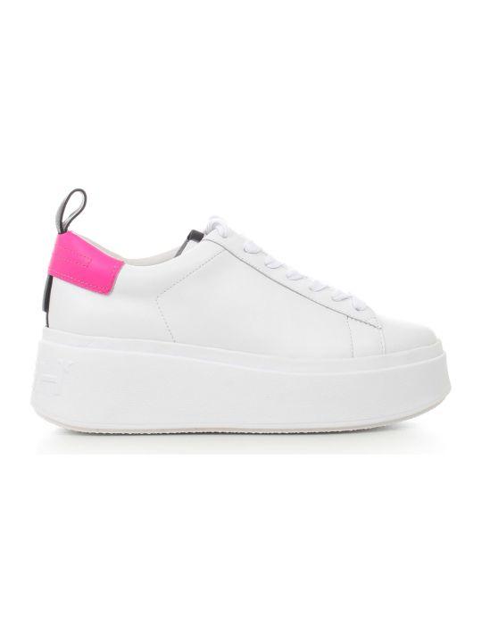 Ash Sneakers Nappa