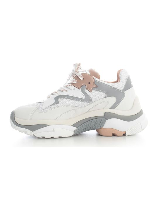 Ash Sneakers Tipo Balenciaga