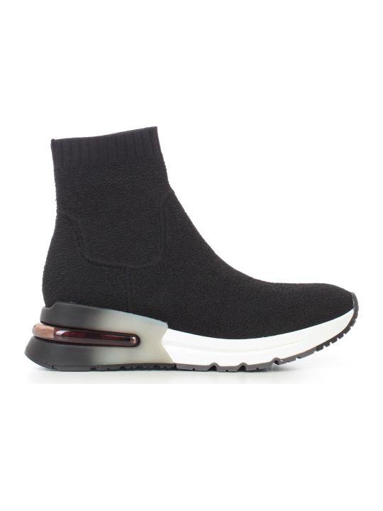 Ash Ankle Boots Elastic Textile