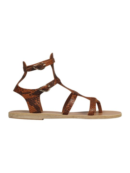 Ancient Greek Sandals Stephanie Gladiatores Sandals