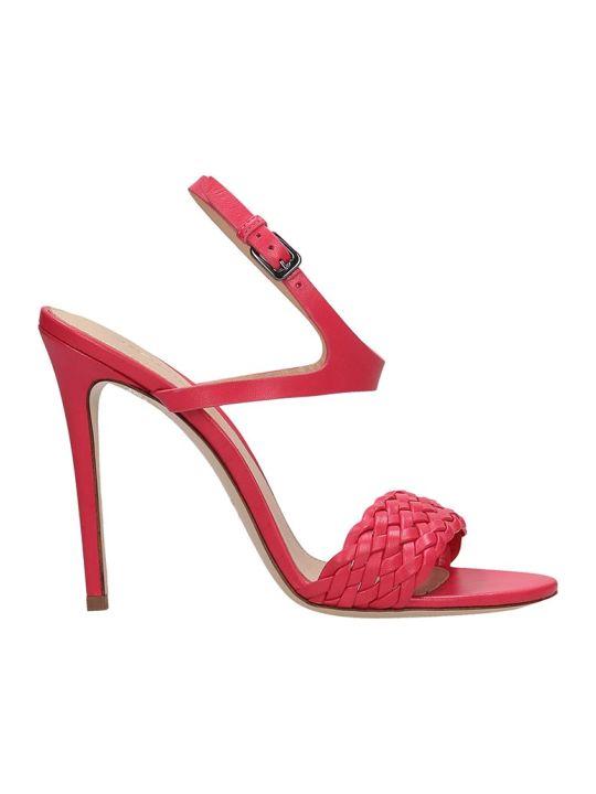 Dei Mille Fuchsia Leather Sandals
