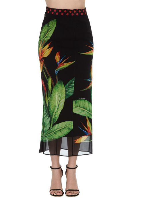 Dolce & Gabbana Strelitzia Print Skirt