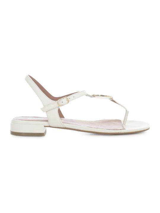Emporio Armani Flip Flops Sandals W/circle Logo