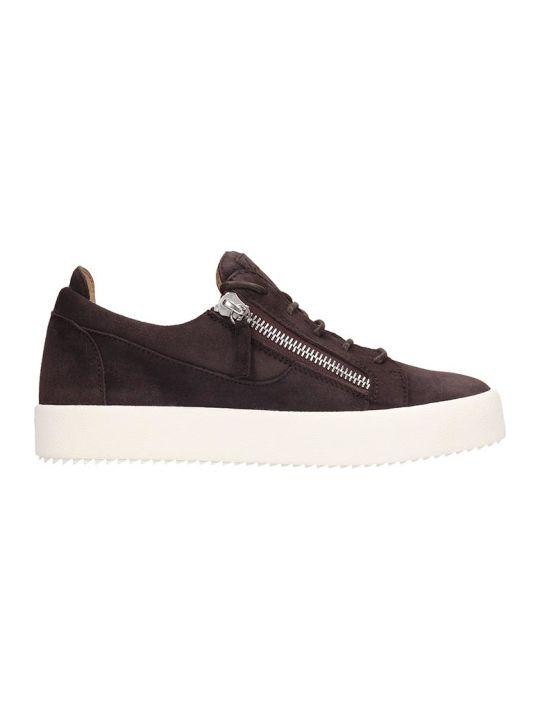 Giuseppe Zanotti Frankie Sneakers In Brown Suede