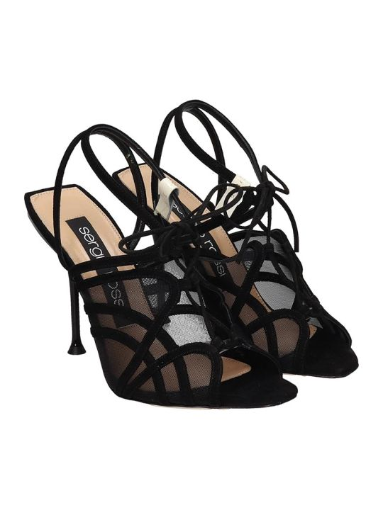Sergio Rossi Sandals In Black Suede