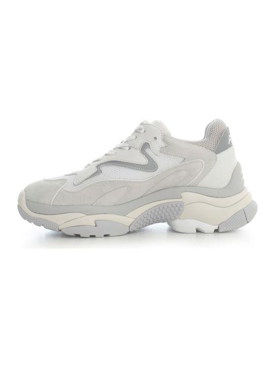 Ash Sneakers Pearl Reflex Silver