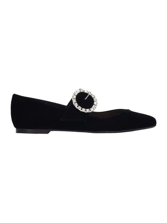 Fabio Rusconi Ballet Flats In Black Velvet