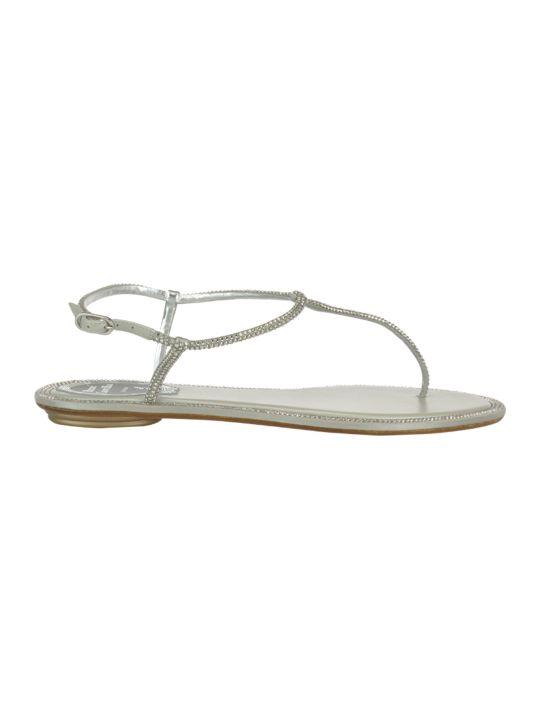René Caovilla Diana Thong Sandals