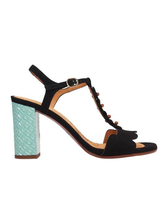 Chie Mihara Black Suede Beijo Sandals