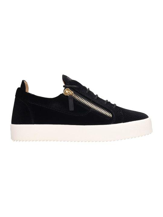 Giuseppe Zanotti Frankie  Sneakers In Black Polyamide