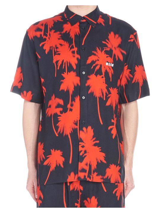 MSGM 'palms' Shirt