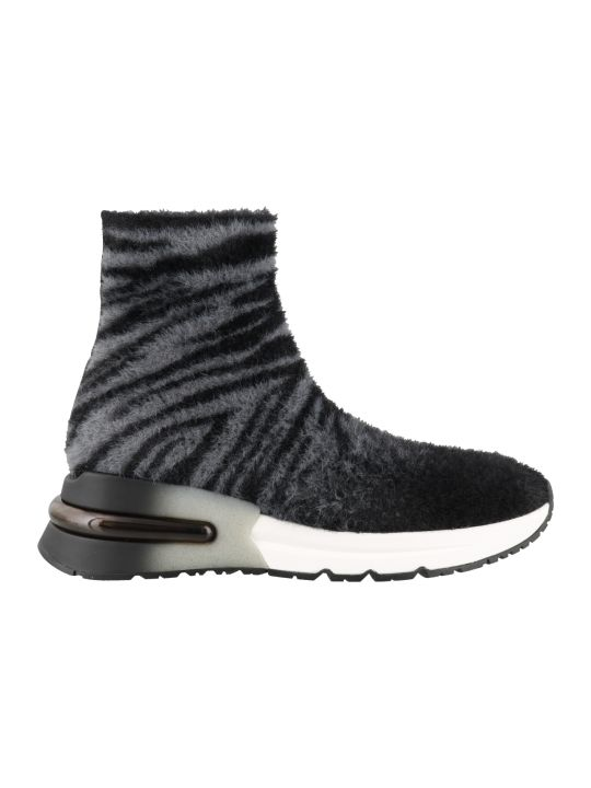 Ash King High Top Sneakers