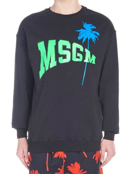 MSGM 'palm' Sweatshirt