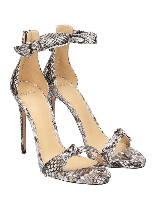Alexandre Birman Clarita Sandals In Animalier Leather