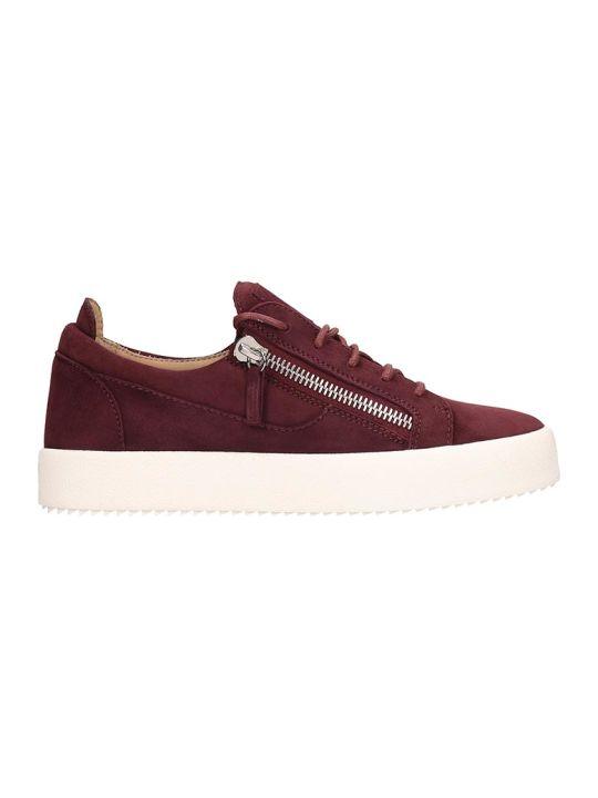 Giuseppe Zanotti Frankie Sneakers In Bordeaux Suede