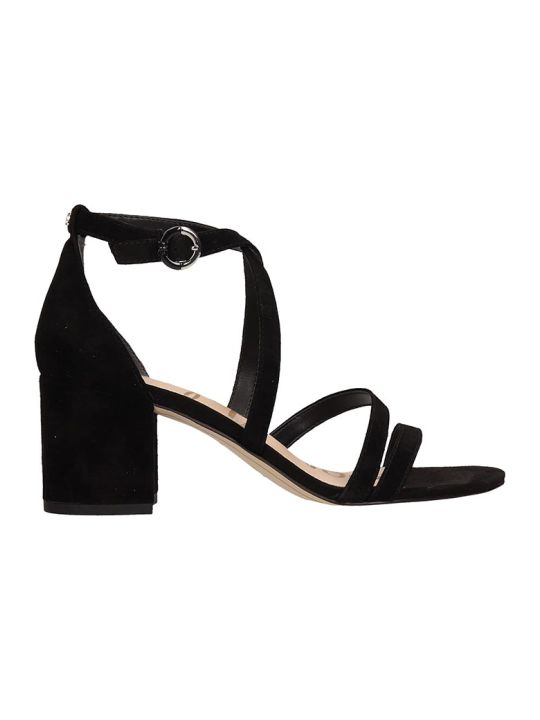 Sam Edelman Black Suede Leather Sandals
