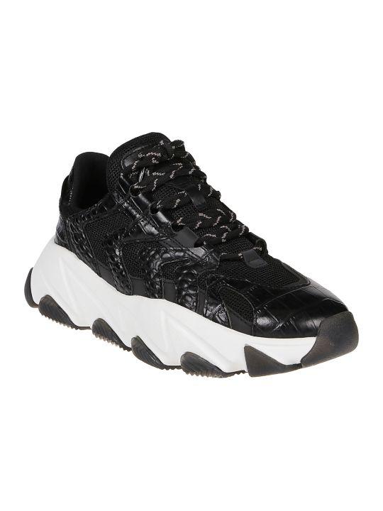 Ash Sneaker Extreme